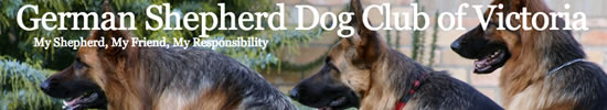 German Shepherd Dog Club of Victoria