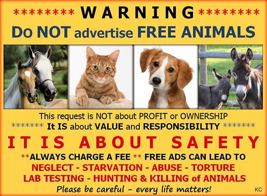 WARNING - Do Not Advertise Free Animals
