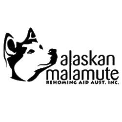 Alaskan Malamute Rehoming Aid Australia