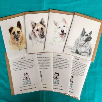 SSRA Illustrated Greeting Cards - Set of 4